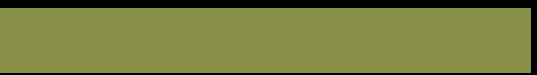 Hendrickje Scholten Logo